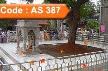All Seasons - Shirdi, Aurangabad Package (Code:AS-387)