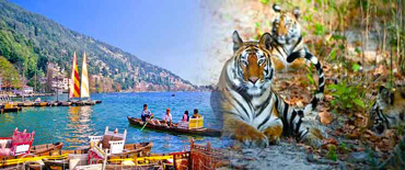 Amazing Corbett and Nainital Honeymoon Package(Code: AS-42)