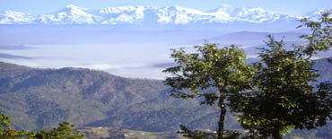Mukteshwar/Nainital/Corbett/4 Night Packages(Code:AS-433)