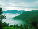 Binsar,Uttarakhand,Allseasonsz.com